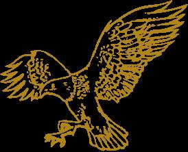 images/falconfoods_logo.png